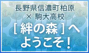 大学 票 駒澤 受験 大学入学共通テストの受験票が12月15にまでに送付されます。